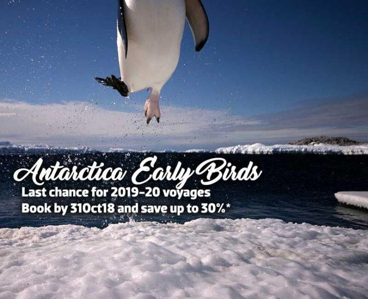 Antarctica Early bird